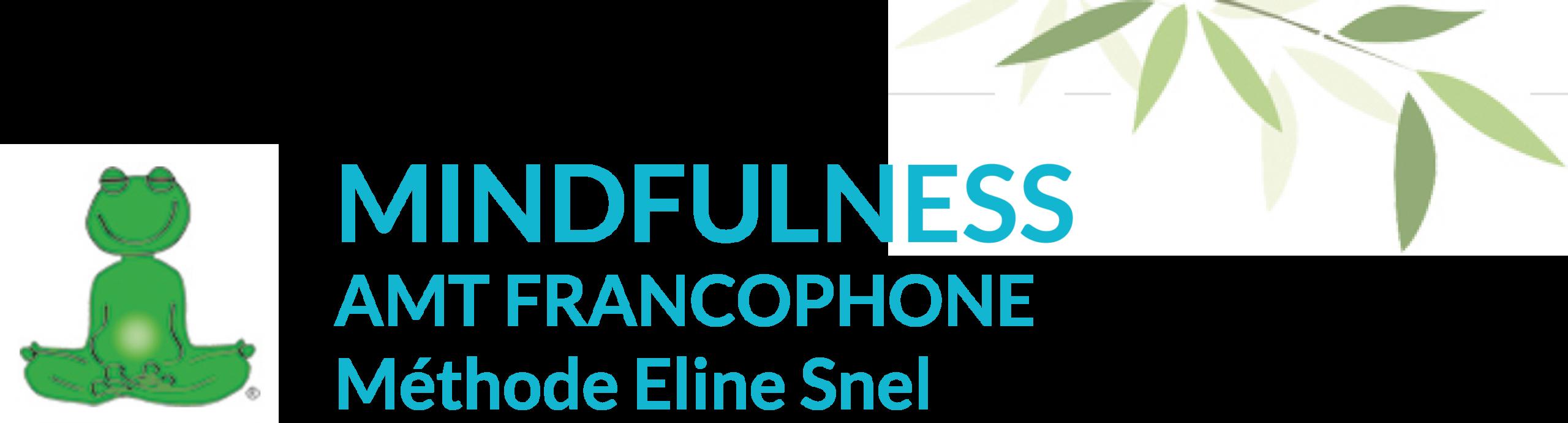 L'AMT FRANCOPHONE